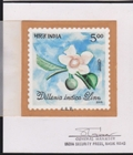 INDIA 2005 Sweet flower 5.00 Stamp Artist´s works signed issued 89/89mm