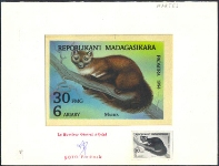 MADAGASCAR 1993. Animal Canidae 140 FMG. Signed Stamp Artist´s Original Motif:129/92mm