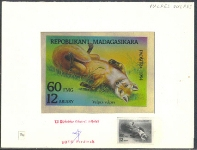 MADAGASCAR 1993. Animal Canidae 60 FMG. Signed Stamp Artist´s Original Motif:129/92mm