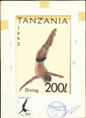 TANZANIA 1993. Diving 200Sh. Stamp Artist´s Work. issued 163/114mm