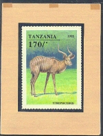 TANZANIA 1995. Animals game 170Sh. Signatured Stamp Artist´s Works. Motif:129/111mm