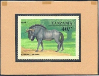 TANZANIA 1995. Animals game ugly 40Sh. Signatured Stamp Artist´s Works. Motif:111/129/mm
