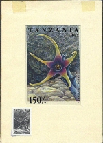 TANZANIA 1995. Cactus 150Sh. Signatured Stamp Artist´s Works. Motif:81/114mm