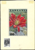TANZANIA 1995. Cactus 100Sh. Signatured Stamp Artist´s Works. Motif:81/114mm