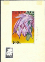 TANZANIA 1995. Cactus 200Sh. Signatured Stamp Artist´s Works. Motif:81/114mm