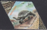 INDIA 2008. Reptile Turle boy .ERROR:Misperf.