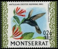 MONTSERRAT 1974. Bird /2c on $1/ Hummingbird colibri Antillean crested ERROR :shift ovpt.