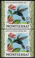 MONTSERRAT 1974. Bird /2c on $1/ Hummingbird colibri Antillean crested ERROR :shift ovpt.VERT.PAIR