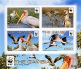 GAMBIA 2011 WWF Yellow-billed Stork IMPERF.sheetlet (4 stamps)