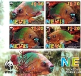 NEVIS 2007 WWF Rainbow Parrotfish IMPERF.CORNER 4-BLOCK (left bottom from 16-sheet)