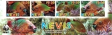 NEVIS 2007 WWF Rainbow Parrotfish IMPERF.4-STRIP (bottom from 16-sheet)