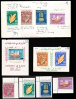 AFGHANISTAN 1963. FFH food. Proofs:set of four + 2 SS + 4 stamps