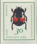GERMANY-DDR 1969. Beetle bug insect 30pf PROOF