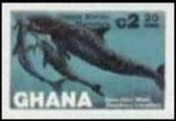GHANA 1983 Whales C2.30. Progressive proofs :4 stages