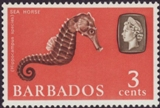 FISHES Barbados 1965. Sea Horse 3c. ERROR:1 st print misspelling. HALF SHEET:50 stamps