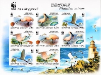 KOREA DPR 2009 WWF. Black-faced spoonbill 1nd print IMPERFORATED ERROR:UNISSUED sheet (8 stamps).BULK:10x
